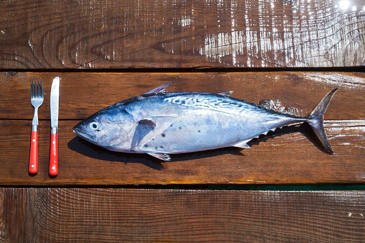 魚を食べるイメージ
