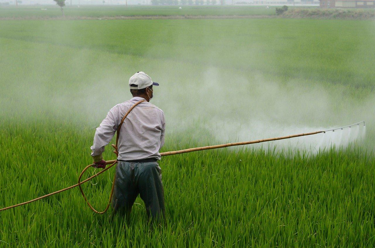 畑に農薬を散布する農家