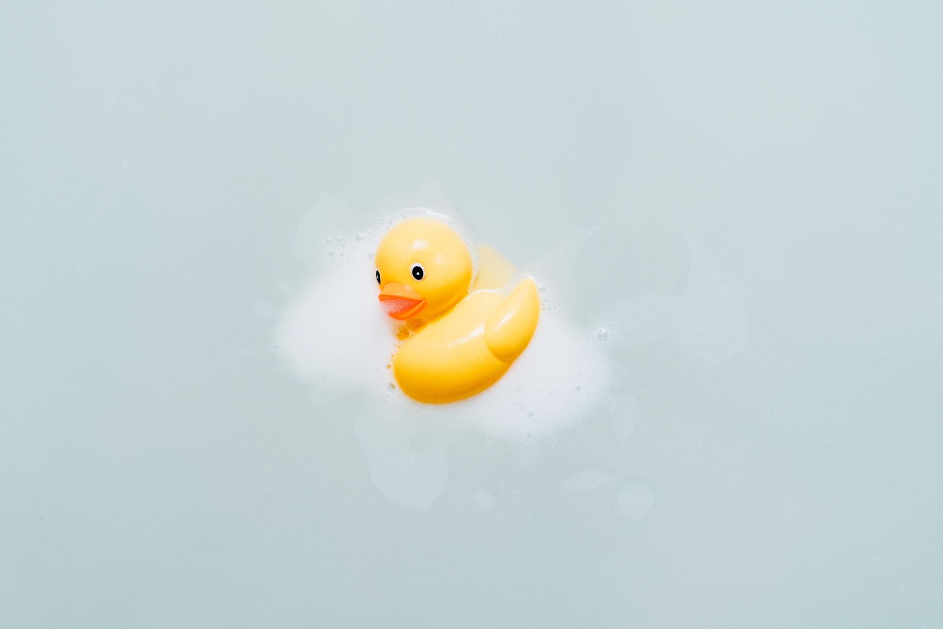 お風呂に浮かぶあひる
