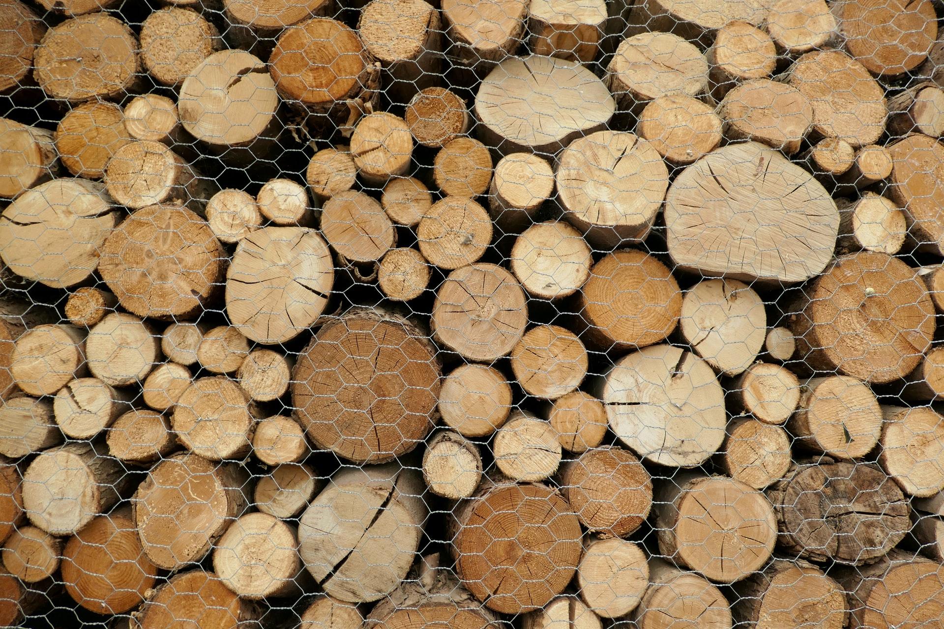セルロースの原料の木材